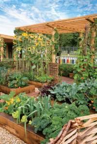 Intensively-Planted-Beautiful-Garden jpg