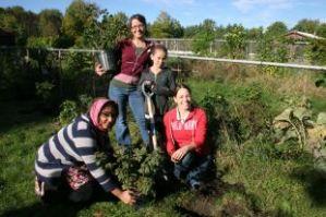 Kanta Ahmad, participant; Kat Rendek, coordinator, All Things Food; Anika Rupert, participant, Mallory McClinchey, horticulturalist.