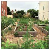 raised-beds-square-jpg